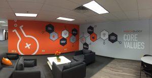custom vinyl wall murals and graphics